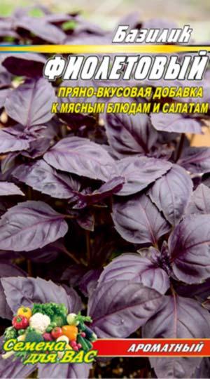 Basil-fioletovyiy
