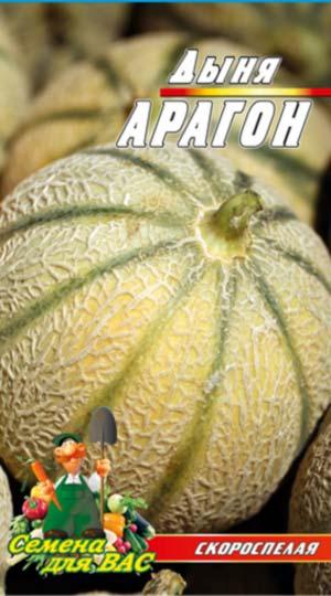 melon-Aragon-F1