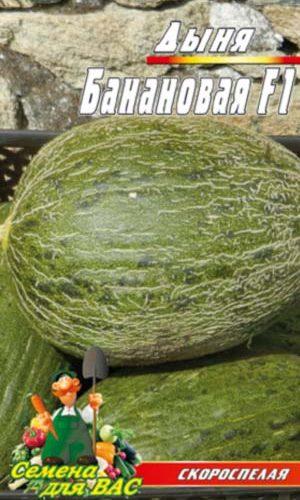 melon-Bananovaya-F1