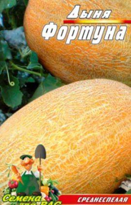 melon-Fortuna
