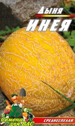 melon-Ineya