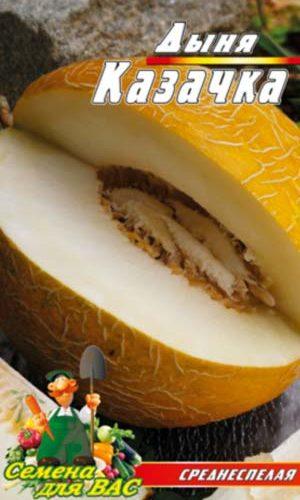 melon-Kazachka