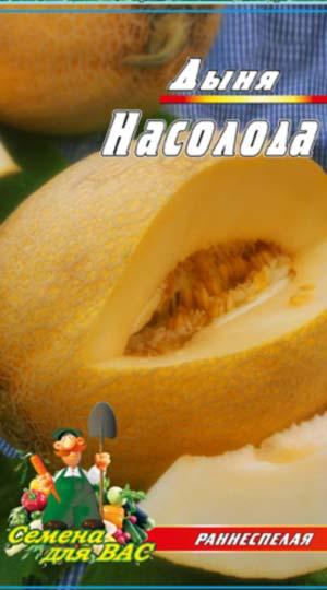 melon-Nasoloda