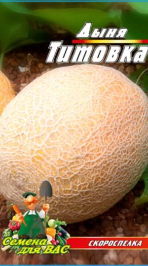 melon-Titovka