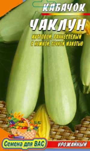 vegetable marrow-CHaklun