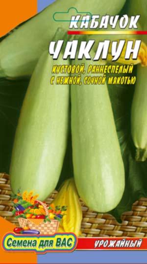 vegetable marrow-CHaklun