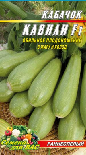 squash-Kavili-f1