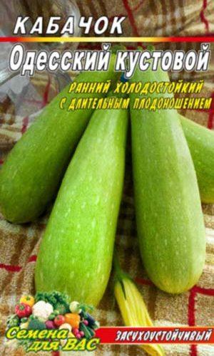 squash-ODESSKIJ-KUSTOVOJ