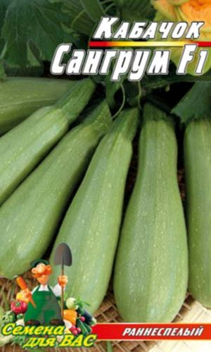 vegetable marrow-Sangrum