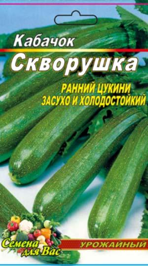 marrow squash-tsukkini-SKVORUSHKA