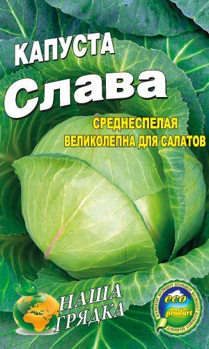 Cabbage-Slava
