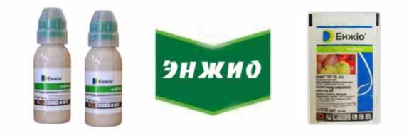 Kupit-insektitsid-Enzhio