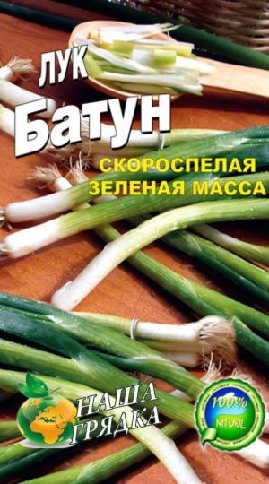 Onion-Batun-vyirashhivanie-iz-semyan