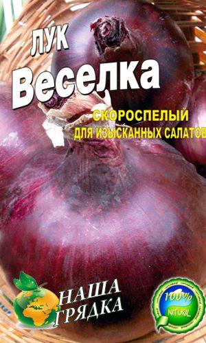 Onion-Veselka-salatnyiy-luk