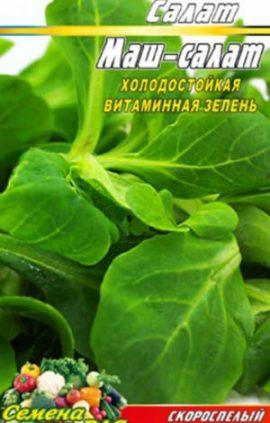Mash-Salat