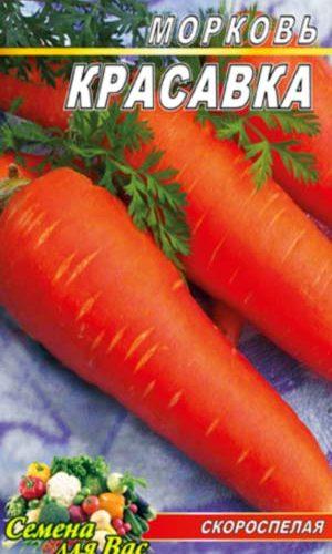 Carrot-Krasavka
