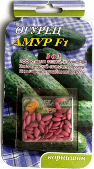cucumber-Amur-F1drazh