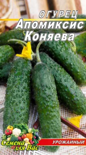 Cucumber-Apomiksis-Konyaeva