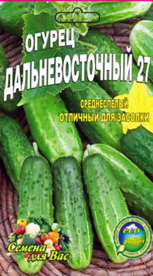 Cucumber-Dalnevostochnyiy-27