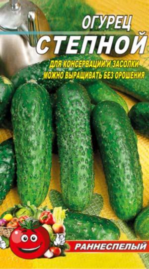 Cucumber-Stepnoy