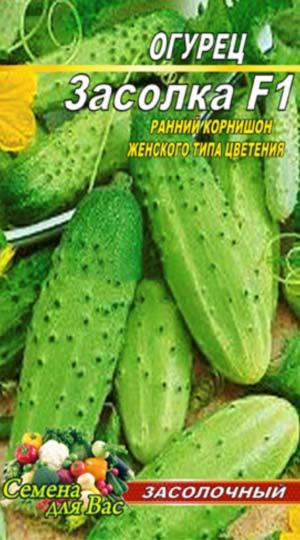 Cucumber-Zasolka-F1