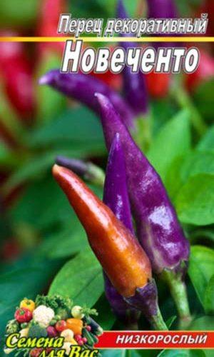 Pepper-Novechento-dekorativnyiy
