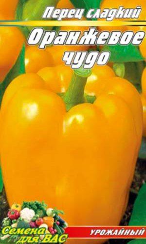 Pepper-Oranzhevoe-chudo-1