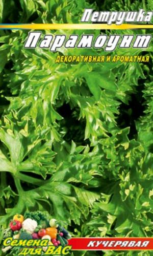 Parsley-Paramaunt-kucheryavaya