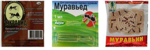 Preparaty-ot-murav-yov