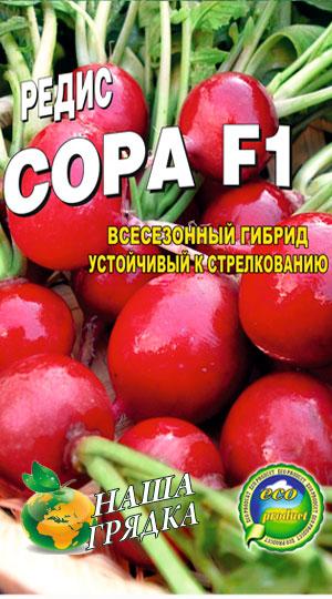 Овощи короткого и длинного светового дня, Интернет магазин семян 18