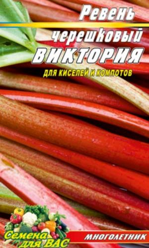 Rhubarb-chereshkovyiy-Viktoriya
