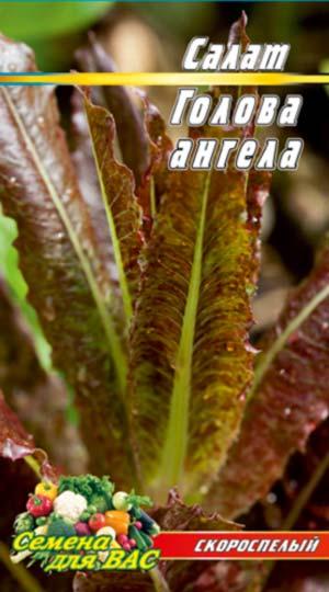Salat-Golova-angela-05-gramm