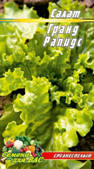 Salat-Grand-Rapids