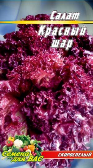 Salat-Krasnyiy-shar