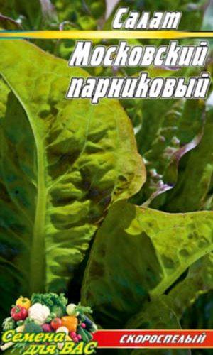 Salat-Moskovskiy-parnikovyiy