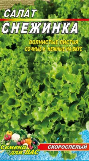 Salat-Snezhinka