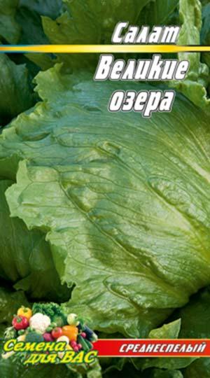 Salat-Velikie-ozyora