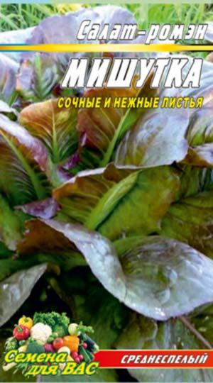 Salat-romen-Mishutka