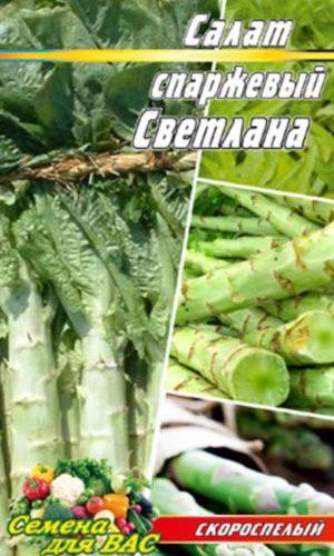 Salat-sparzhevyiy-Svetlana