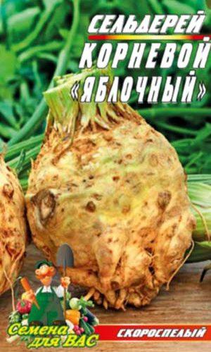 Selderej-Kornevoj-YAblochny