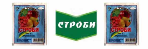 Strobi-fungitsid-kupit-tsena-v-Ukraine