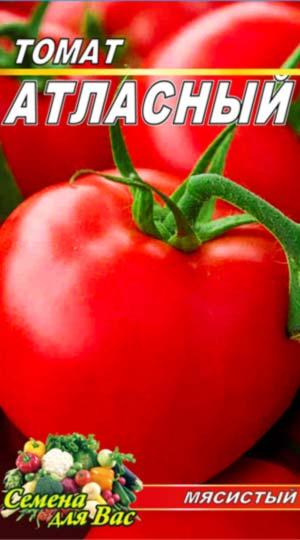 Tomato-Atlasnyiy