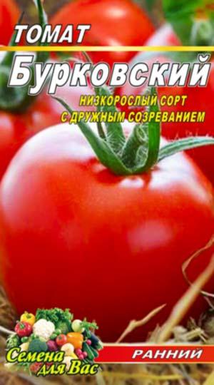 Tomato-Burkovskiy-ranniy
