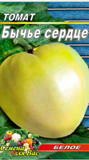 Tomato-Byiche-serdtse-beloe