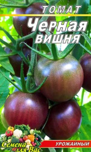Tomato-CHernaya-vishnya
