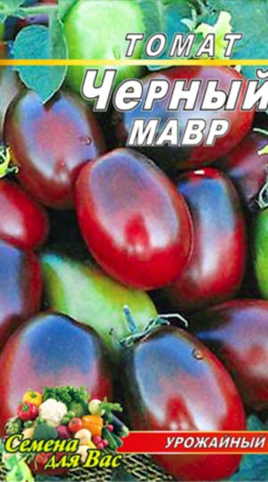 Tomato-CHernyiy-mavr