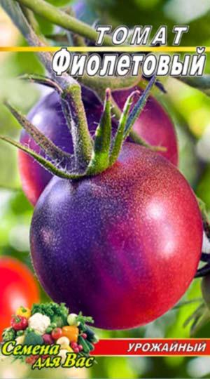 Tomato-Fioletovyiy
