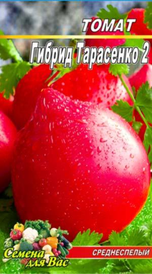 Tomato-Gibrid-2-Tarasenko
