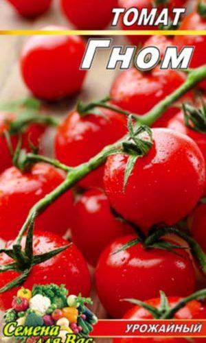 Tomato-Gnom