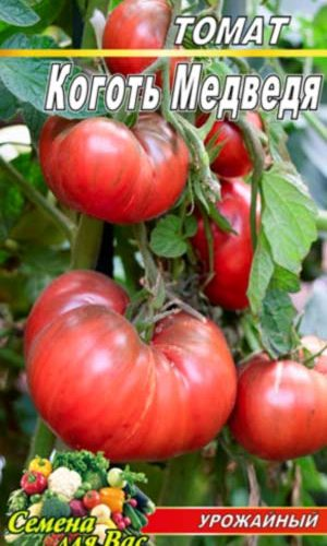 Tomato-Kogot-Medvedya